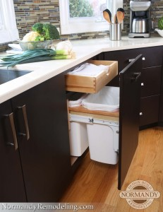 Kitchen trash can with storage ideas created by Normandy Designer Leslie Molloy