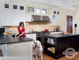 How to keep pets safe during remodel