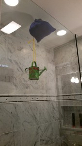 DIY Rain Shower