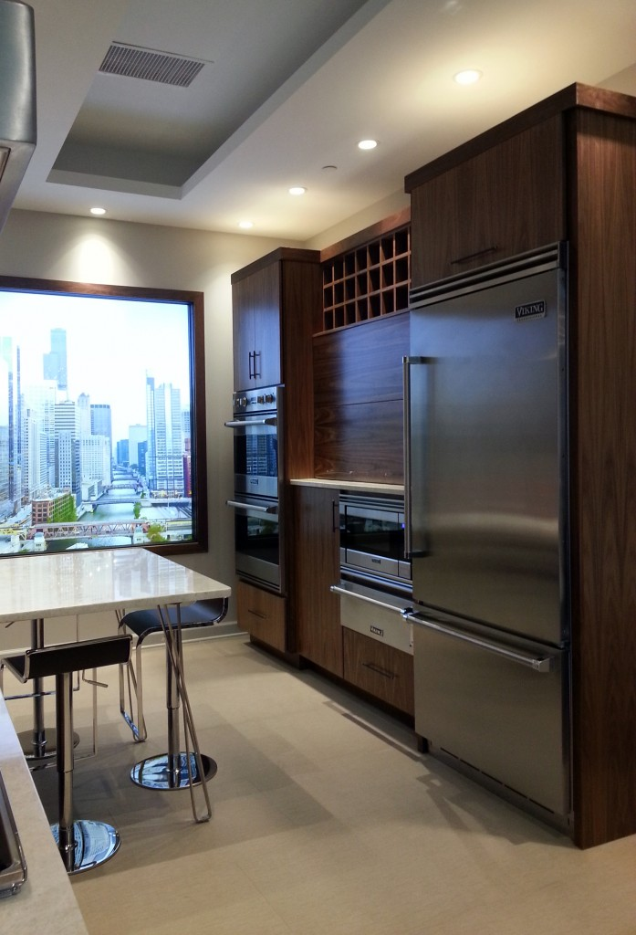 Chicago condo kitchen ideas