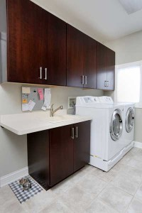 Modern Laundry Room with Pets in Mind