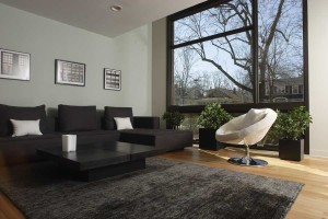 Modern Family Room and Living Room in the Western Suburbs