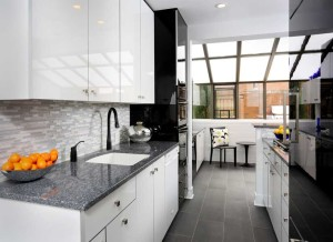 Modern Galley Kitchen Remodel in Lincoln Park
