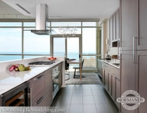 Chicago Condo Renovation with View of Lake Michigan