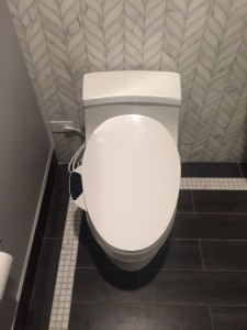 Bathroom Remodeling Ideas: Toilet Seat Technology